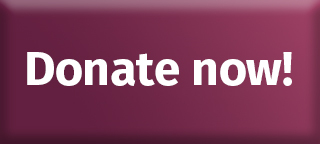 http://www.troymusichall.org/img/uploads/Donate%20Now%20button.jpg